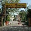 Angyalföldi Termelői Piac - Budapesti Virágpiac