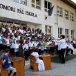 Tomori Pál Általános Iskola