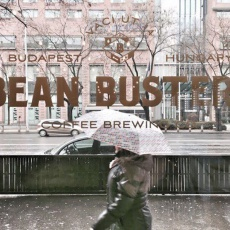 Bean Busters