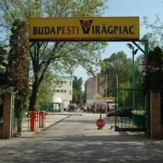 Angyalföldi Termelői Piac - Budapesti Virágpiac (Elköltözött, új címen!)