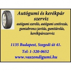 Vászondi Gumiszerviz - Szegedi út
