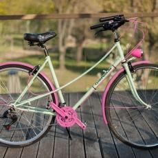Menta-pink: egyedi építésű hölgybringa
